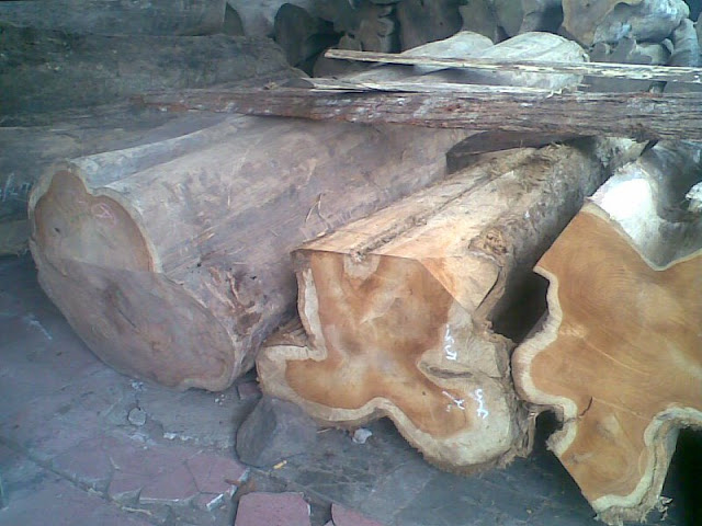 Kayu Solid, Potongan Kayu Jati,Singa Jati Furniture